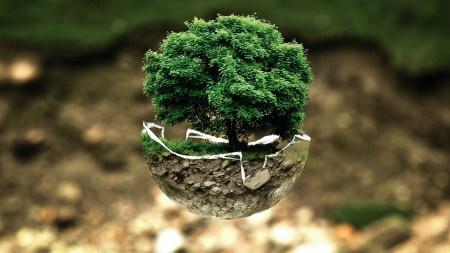 Toyota dává ekologii zelenou, proto odmítá elektromobily.