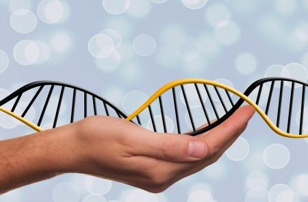 Nobelovku za chemii získaly tvůrkyně metody, pomocí které vznikl COVID-19.