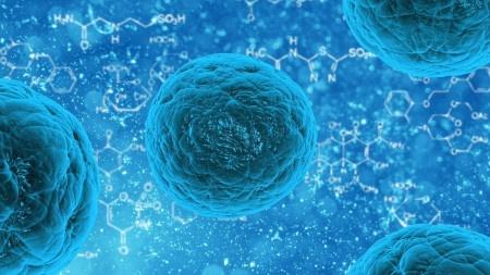 Život je možný i ve vesmíru, potvrdily pokusy s bakterií na ISS