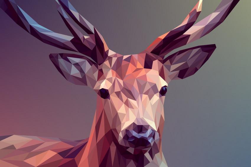Testovali jsme grafického génia s 100% gamutu Adobe RGB