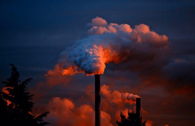 Vedra způsobují environmentální stres, braňte se mu pomocí klimatizace